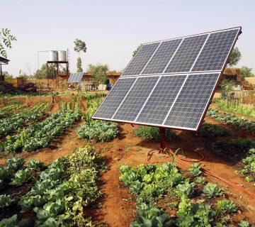 Michael Reza Pacha, énergie solaire en Afrique